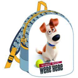 Kis kedvencek titkos élete táska, hátizsák 31 cm