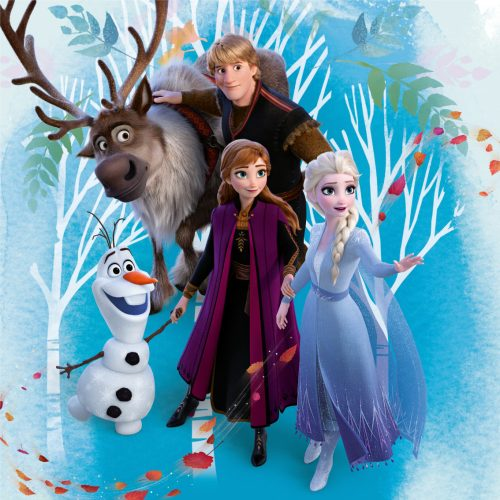 Jégvarázs párnahuzat 40*40 cm, Frozen II