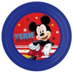 Mickey műanyag tányér 3D
