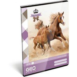 Lovas füzet A/4, 32 lap kockás Geo Horse Two