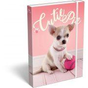 Kutyás füzetbox A/4 Pet Cutie Pie