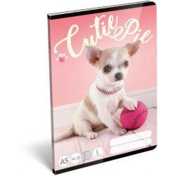 Kutyás füzet A/5, 32 lap vonalas 1.osztály (14-32) Pet Cutie Pie