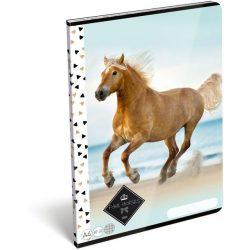 Lovas füzet A/4, 32 lap kockás Geo Horse Beach