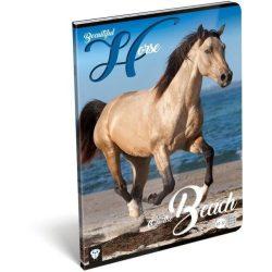Lovas füzet A/4, 32 lap kockás Horse Beautiful