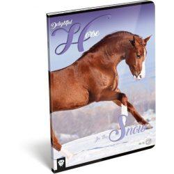 Lovas füzet A/4, 32 lap sima Horse Delightful