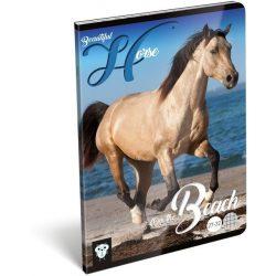 Lovas füzet A/5, 32 lap, kockás, Horse Beautiful