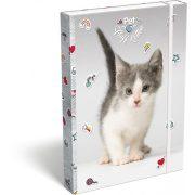 Cicás füzetbox A/4 Pet Fluff Kitten