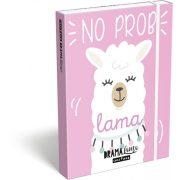 Láma füzetbox A/5 Lollipop Drama Lama Pink
