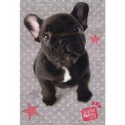 Kutyás vázlatfüzet A/4 20 lap, francia bulldog, Paso Studio Pets