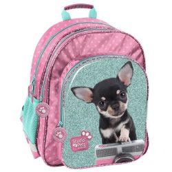 Kutyás hátizsák, 38 cm, zöld-rózsaszín, csivava, Paso Studio Pets