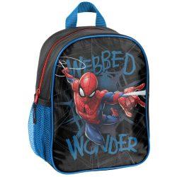 Pókember hátizsák, táska, 28 cm, Paso