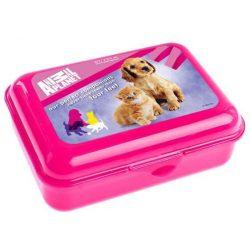 Animal Planet uzsonnás doboz, cicás-kutyás